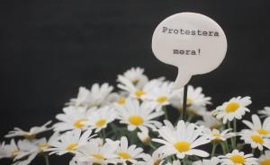 protesteramera2margeuriter-
